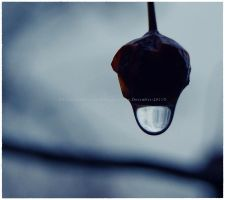 Cold December Rain by GrotesqueDarling13