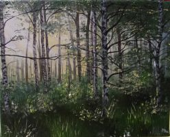 Rays of spring in the birch forest by Mishice