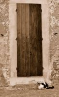 Enormous Door... by greentortoise