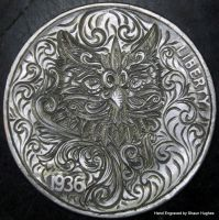 Owl Hand Engraved by Shaun Hughes by shaun750