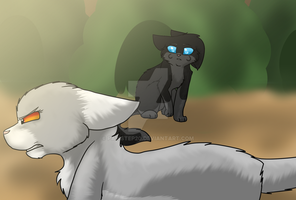Nightpelts fright by Pawstep20