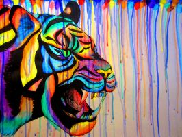 Rainbow Tiger by Wildflower789