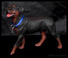 Breyer Companion Animals - Rottweiler by The-Toy-Chest