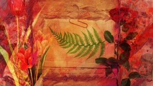 The Fern Collage by StarwaltDesign