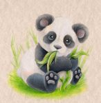 Panda by SirKittenpaws