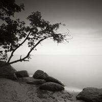 Solace II by EmilStojek
