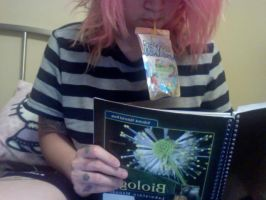CAPRISUNS AND STUDYING by lachick4