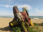 Psychedelic Tree Stump by LocalCat