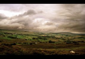 Ireland by younghappy