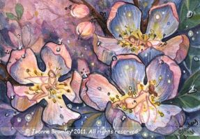 ACEO Faes' Twilight Sleep by JoannaBromley