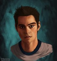 Stiles - gif animation by trasigpenna