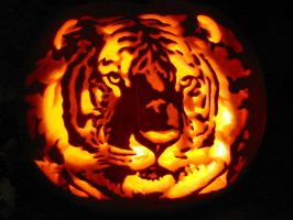 Tiger Pumpkin Carving by Armuri