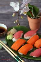 Homemade Salmon and Tuna Sushi for Dinner by theresahelmer