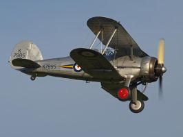 Gloster Gladiator flyby. by davepphotographer