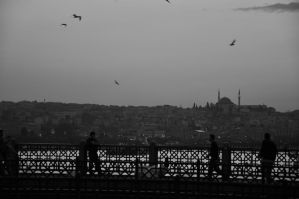 Galata Bridge and Istanbul by barissuer