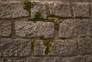 Stone Wall with Moos by Alynaris-Stocks