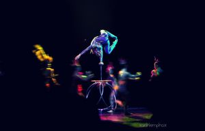 Circus of Life by AnhPho