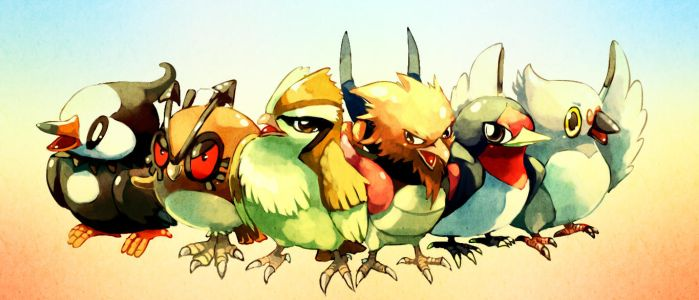 Pokemon : Common birds by Sa-Dui