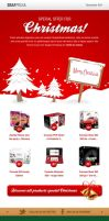 Christmas Email Template by Grafpedia