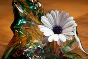 Daisy Still Life by FeralWhippet