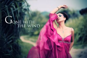 gone with the wind by rezaaditya7