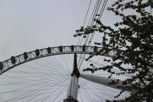 Eye Perspective by tammyins