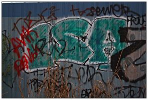 Graffiti 4 in Series of 6 by shawn529