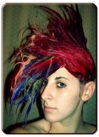 Fun With Shampoo Mohawks by balloons