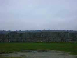 Beaumaris Castle by ionshu