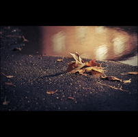 The fallen'... I. by snarto