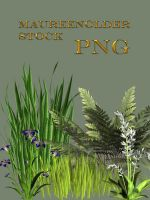 STOCK PNG plants by MaureenOlder
