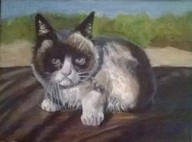 Grumpy Cat painting  by sevenrandomcircles