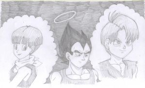 Vegeta Mourns by gothgirl9678