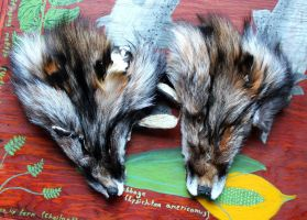 Guess what color foxes these are! by lupagreenwolf