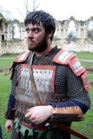 Vikings 2011 stock 4 by Random-Acts-Stock