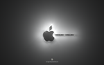 Steve Jobs 2011 A by gfx-shady