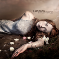 Silences by CrisestepArt