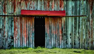 Colourful shed. by lomatic