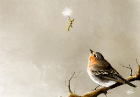 Robin and the parachutist by fablau