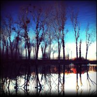 reflection 15:22 by covanea
