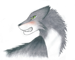 Snarling wolf by cinface