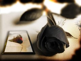 Black_rose_for_Goddes_of_tears by sTolyaR