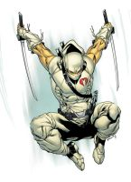 StormShadow by spidermanfan2099