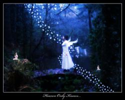 Heaven Only Knows... by InYaFaceDesigns