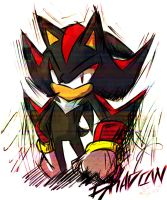 .:AT:. Shadow the hedgehog by Zubwayori