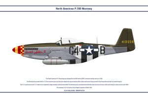 Mustang USAAF 362nd FS 2 by WS-Clave