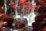 red waterfall by Membruto