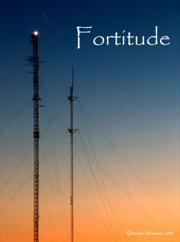 Fortitude by theghostofwazup