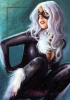 Black Cat SM archives 20 by charles-hall