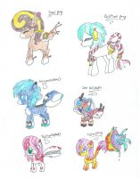 Pony adopt sheet by puppetadopts